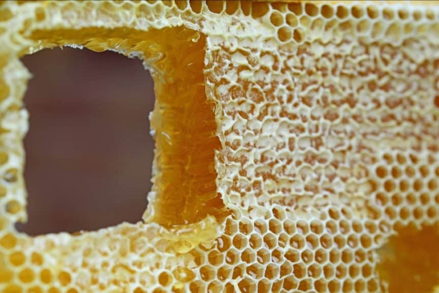 Is Honeycomb Edible And How Does It Taste?